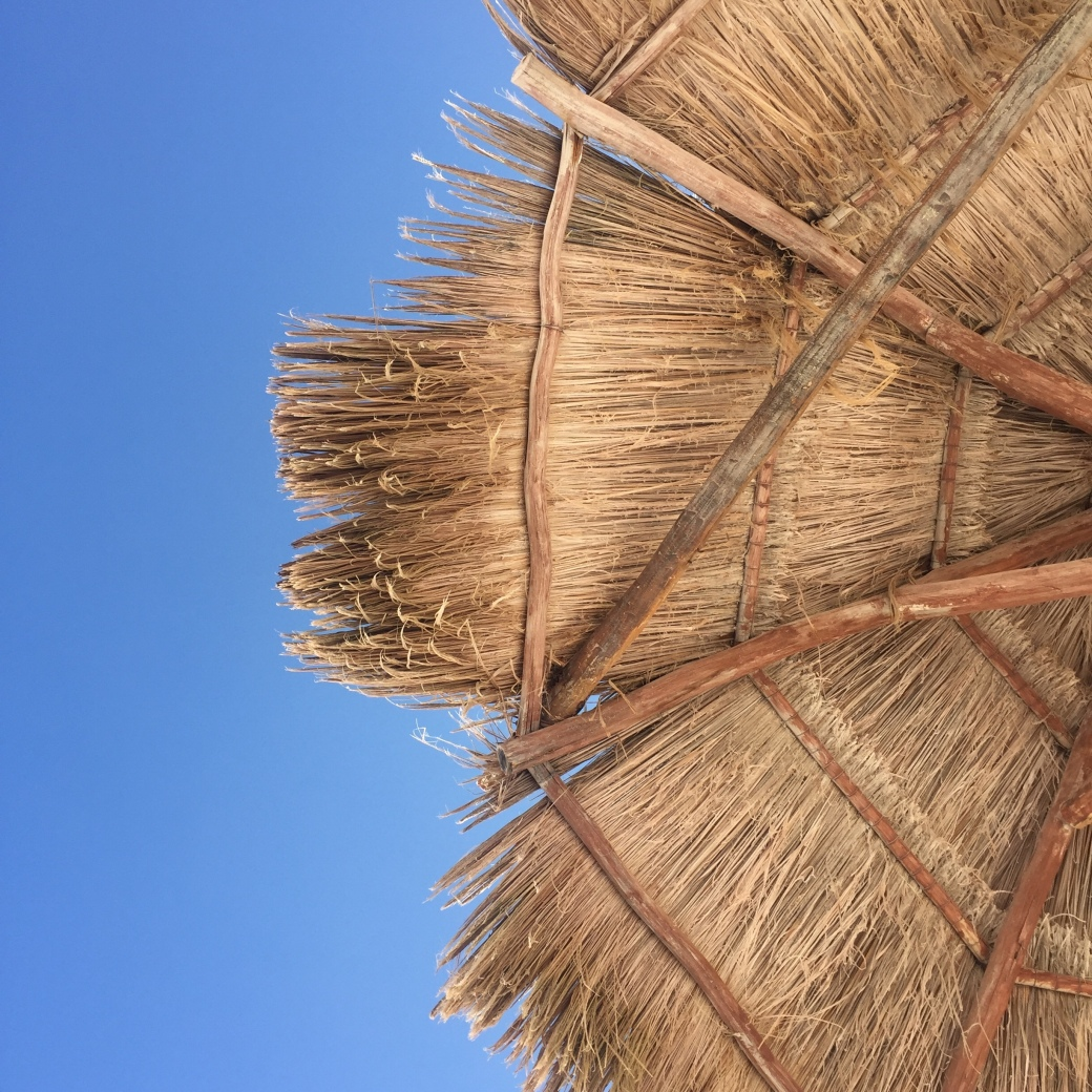 Week One - Palapa